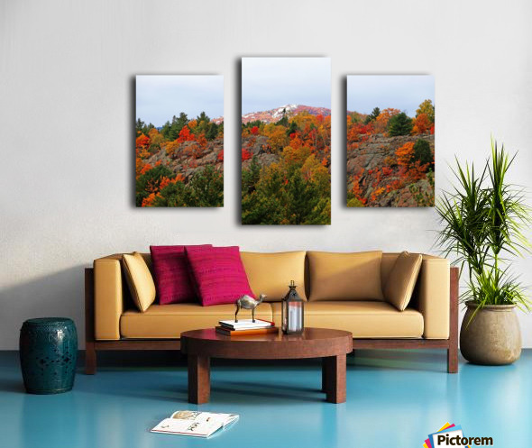 Silver Peak Canvas print