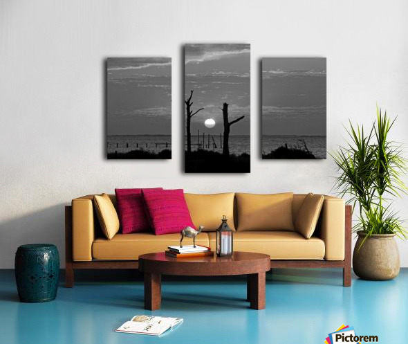 BW Two Tree Sunset Canvas print