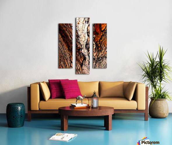 Biggs Jasper Canvas print