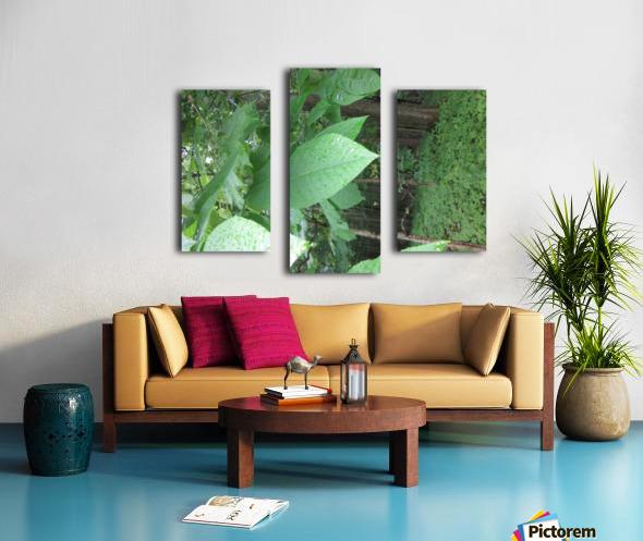 IMG_4893 Canvas print