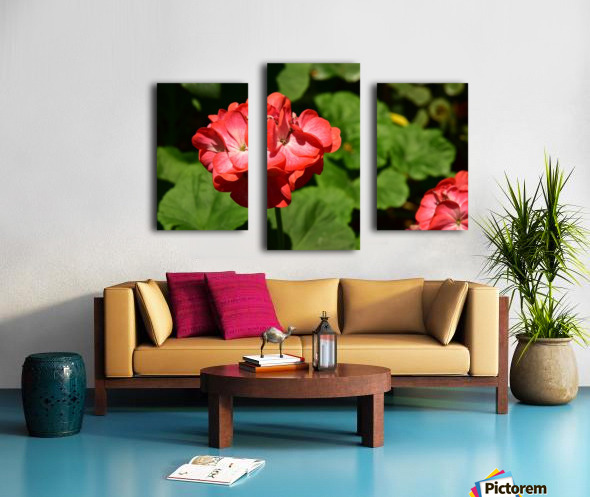 Plants - Flowers - 010 Canvas print