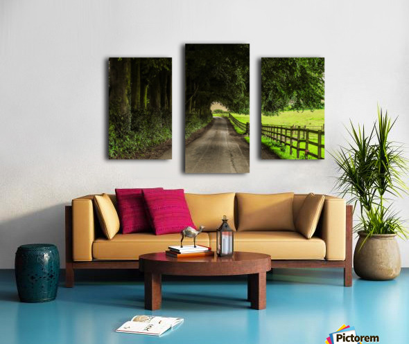 Beautiful Nature Landscape Tree Forest Trees Photography landscape photo Scenery Impression sur toile