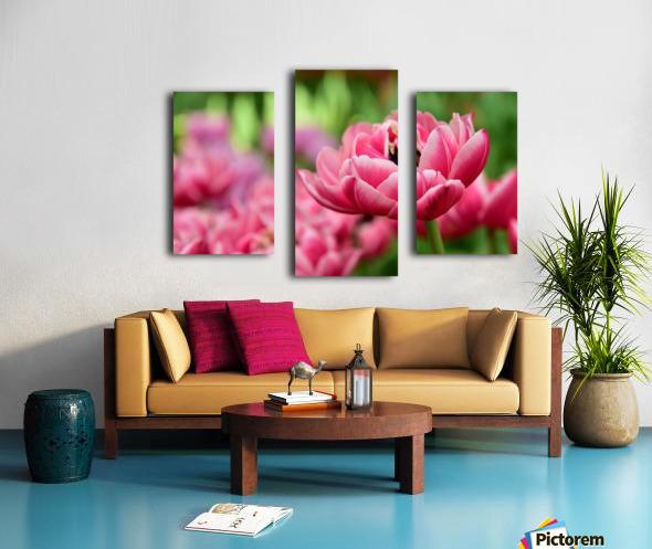 Plants - Flowers - 013 Canvas print