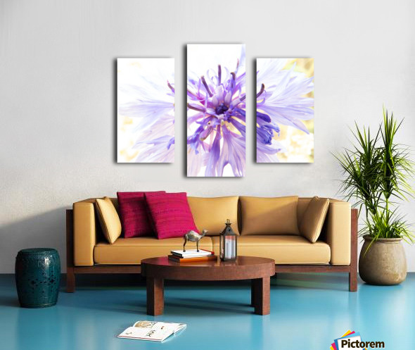 Purple Flower Burst Canvas print