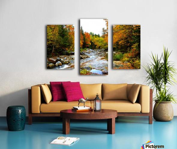 10.9.18 Fall Canvas print