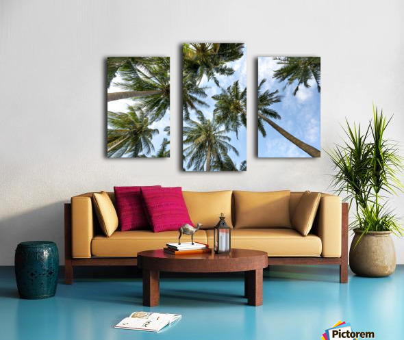 palm trees, sky, palms, background, summer, tropical, nature, holidays, travel, paradise, outdoors, Canvas print