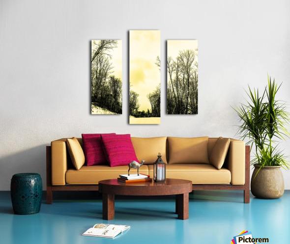 58AD1A24 DE23 4409 834D 74F66B329659 Canvas print