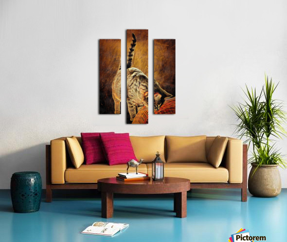 Curiosity And The Cat Canvas print