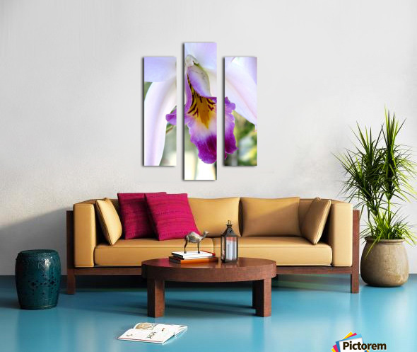 Orchid Poem Canvas print