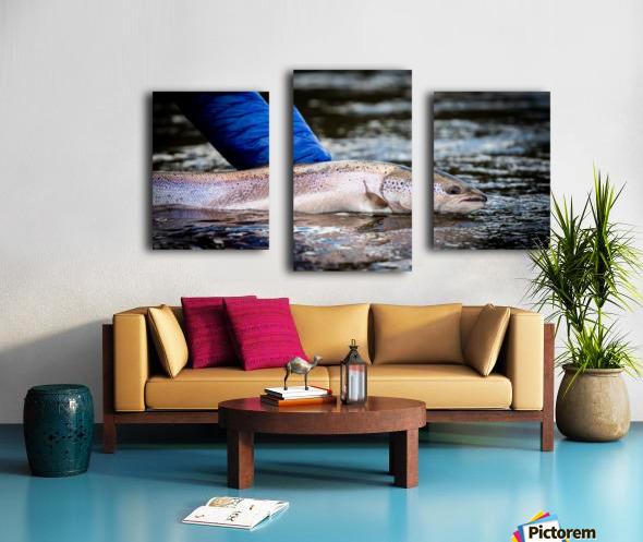 Salmon release Canvas print