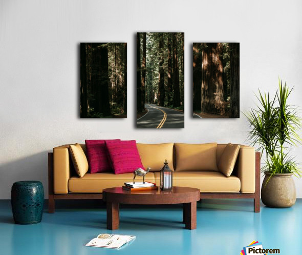 Avenue of the Giants Impression sur toile