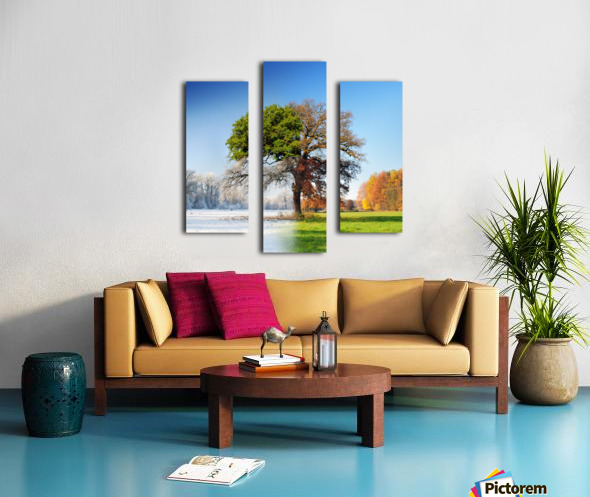 4 seasons Canvas print