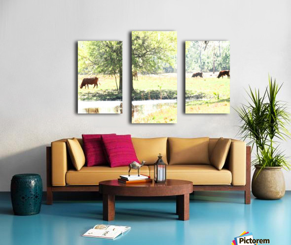 IMG_0121 Canvas print