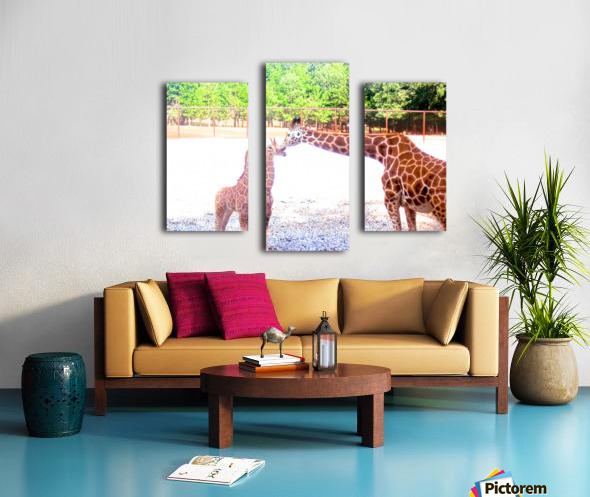 100_0842 4 Canvas print