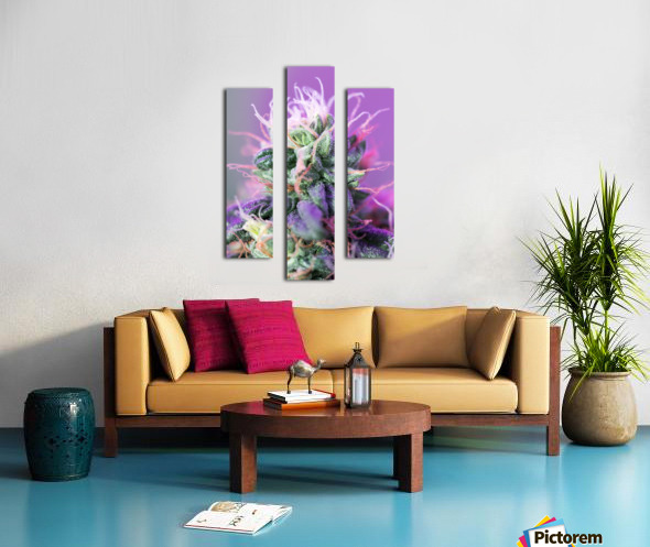 PinkFlower Canvas print