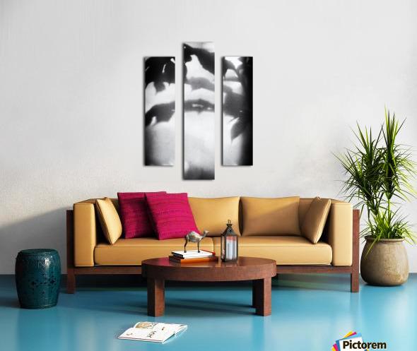 Plant Shadow Canvas print
