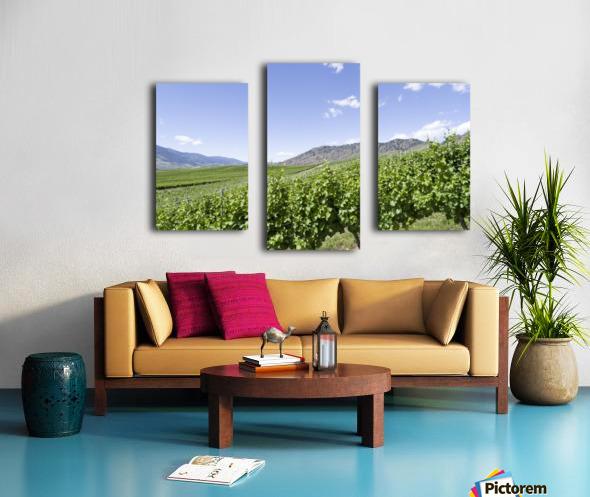 Okanagan Valley winery Canvas print