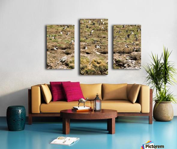 Puffins being puffins 7 Canvas print