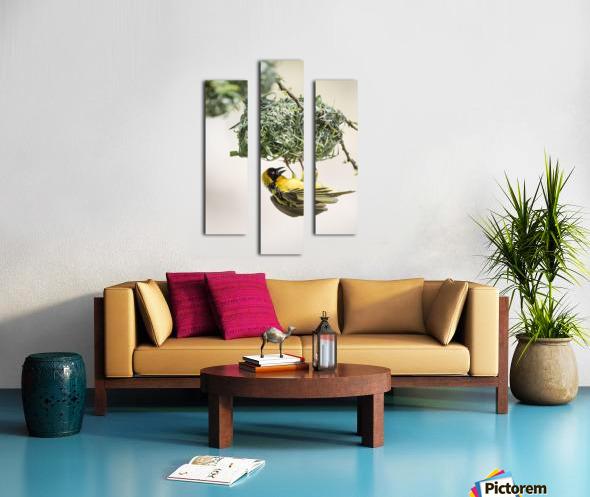 Anybody Home Canvas print