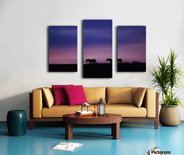 Zebra Sunrise Canvas print
