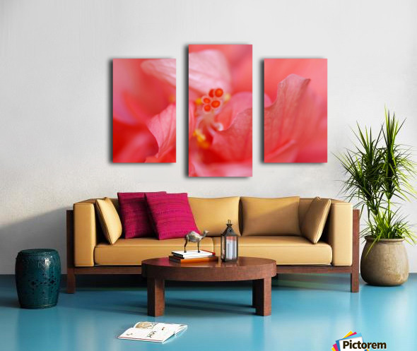 Double Peach Hibisicus Canvas print