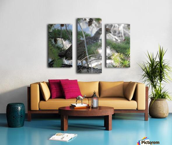 ruffed Canvas print