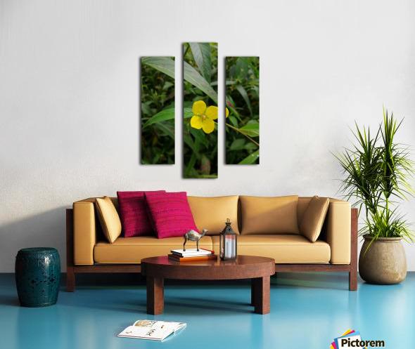 IMG_20190210_125037 Canvas print