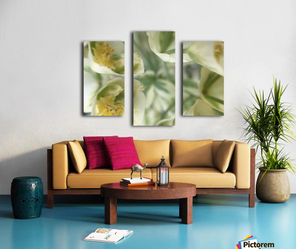 IMG_3383 Canvas print