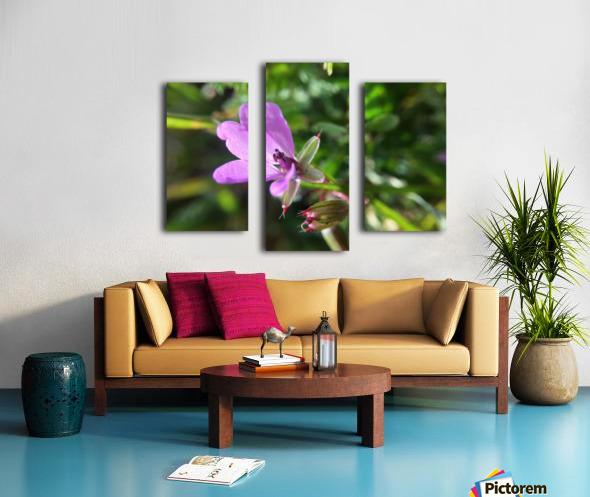 IMG_3451 Canvas print