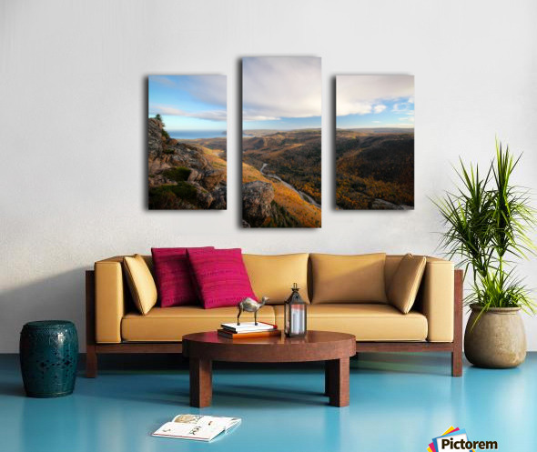 Franey Canvas print