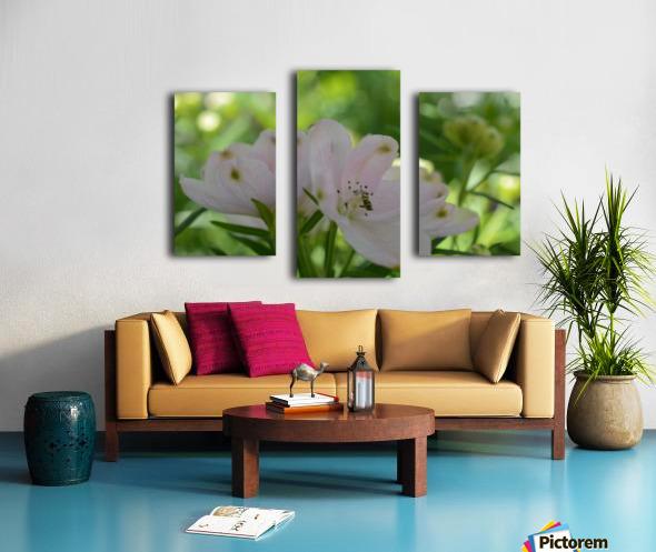 White Flowers Photograph Canvas print