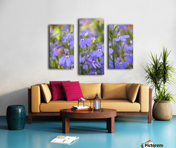 Blue Flowers Photograph Canvas print
