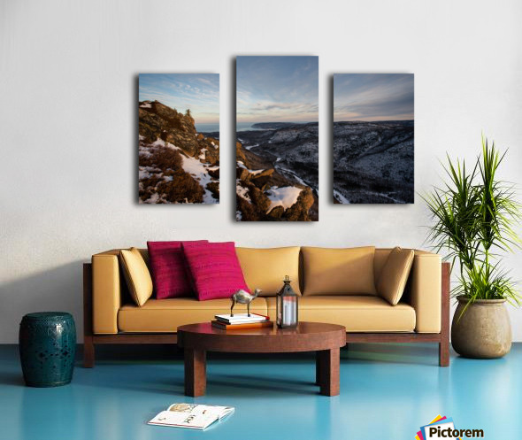 Franey Winter Canvas print
