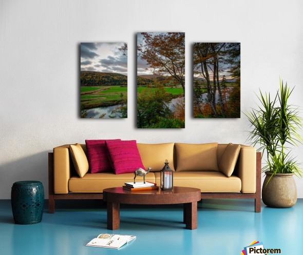 Serene Valley Canvas print