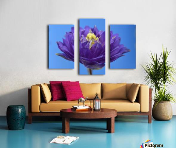 Blue Flower Photograph Canvas print