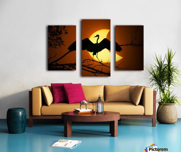 Egret Eclipse Canvas print
