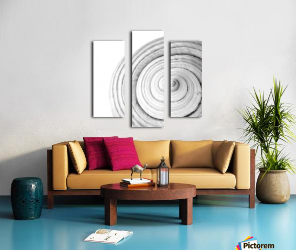 Conch 1 Canvas print