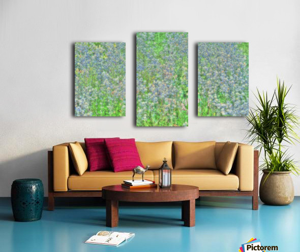 Jardin à la Monet Canvas print