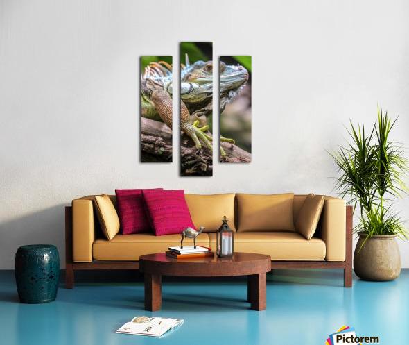 The Raptor Canvas print