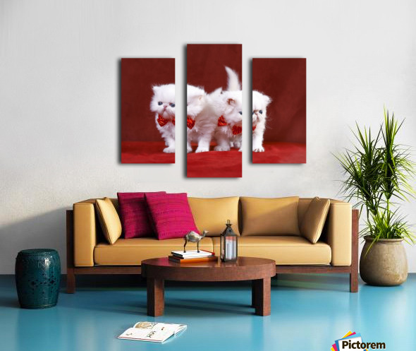 White Persian Kittens with bow ties Canvas print