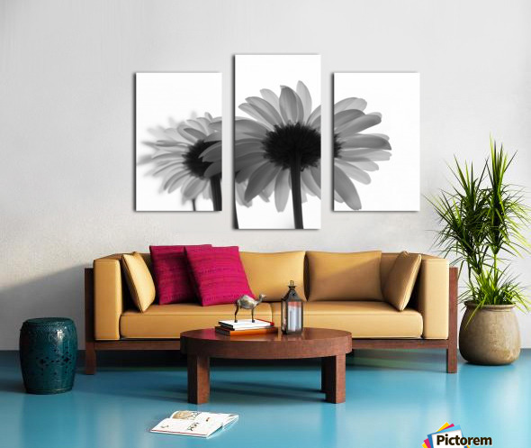 Daisies Rowing To The Left BW Canvas print