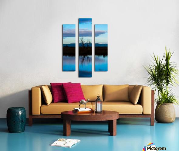 20190228 DSC_0081 3 Canvas print