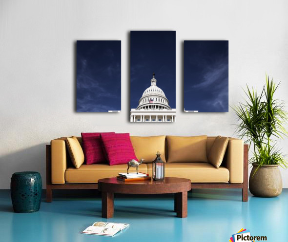 United States Congress Canvas print