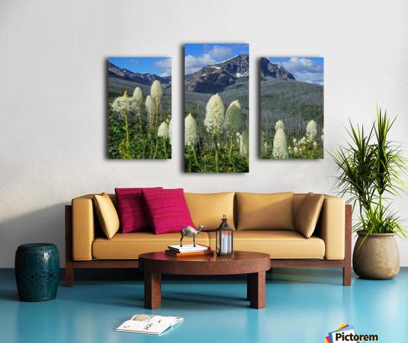Bear Grass Fields Canvas print