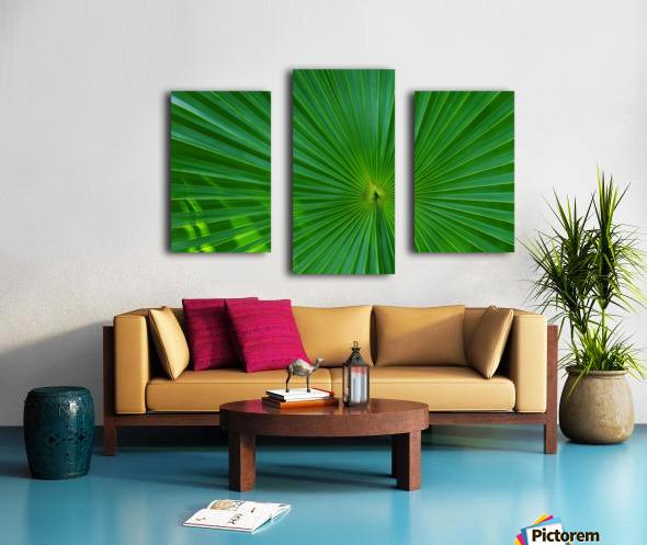 Palm tree detail Canvas print