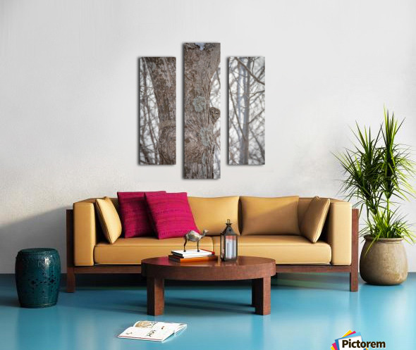 Whos looking at who Canvas print