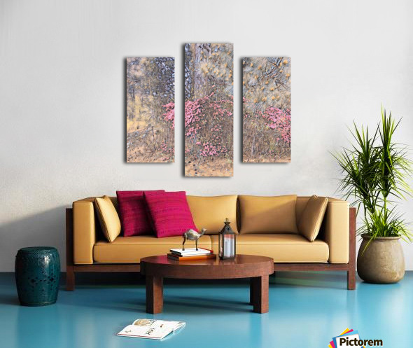 22E87D39 0480 45DB AB7D 1F5C4D7E44D6 Canvas print