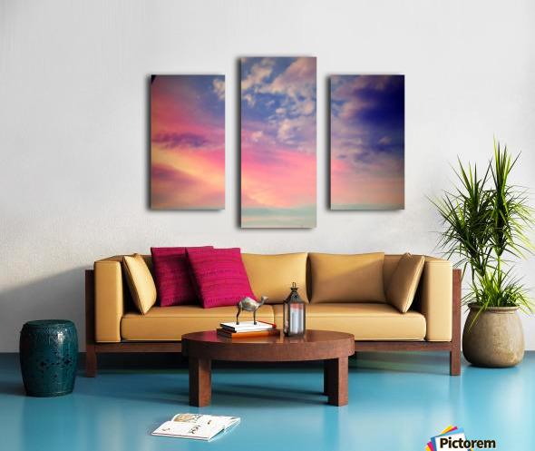 IMG_3800 Canvas print