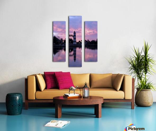 20190212 IMG_3246 2 Canvas print