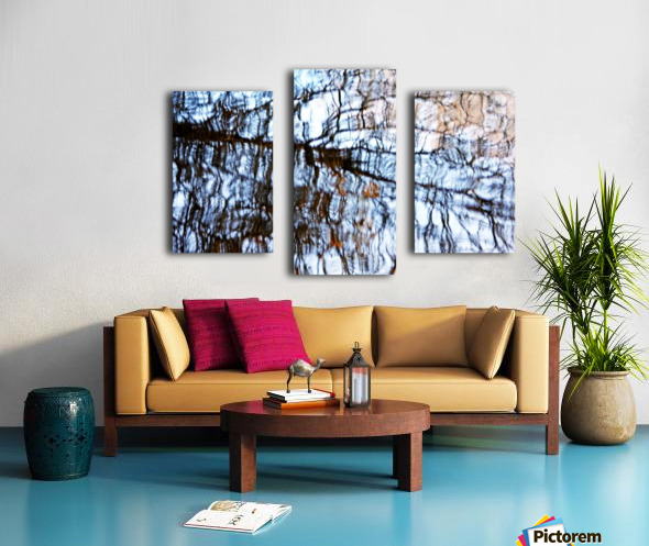 Searching For Spring Canvas print